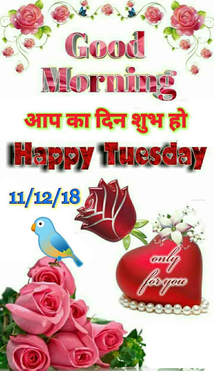 📹मजेदार वीडियो📹 - Good * Morning आप का दिन शुभ हो Happy Tuesday 11 / 12 / 18 ) only for you  - ShareChat