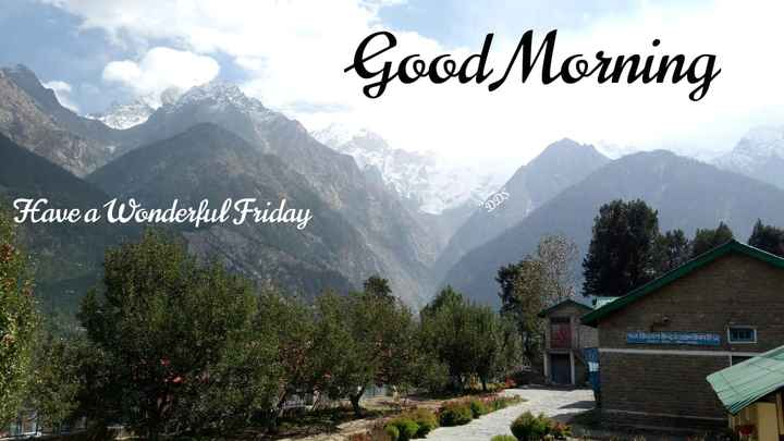 प्राकृतिक - Good Morning Have a Wonderful Friday DDS फल Idपन 3IHITTER  - ShareChat